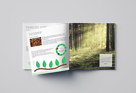 Harmony Timber Solutions, Brochure, design, canterbury, kent, uk, graphic design, marketing, branding